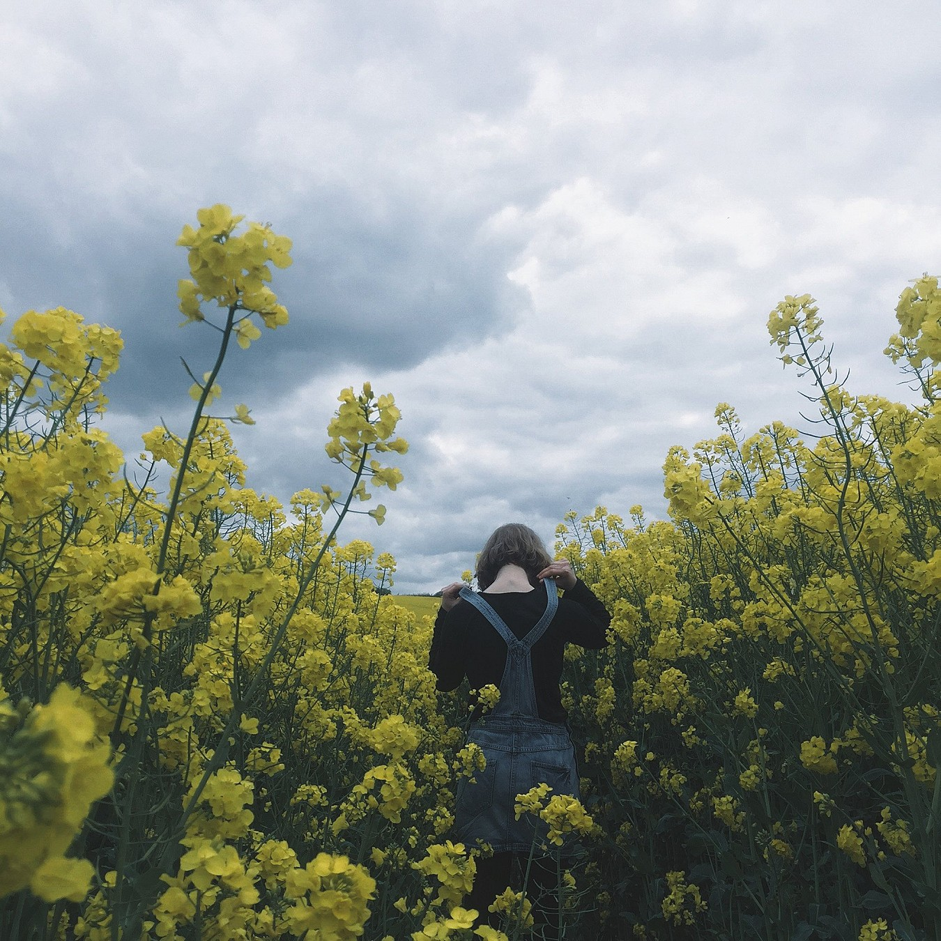 Kate Phoenix standing in a field of yellow rapeseed flowers.